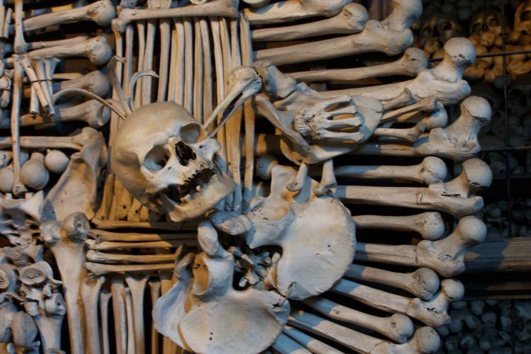 coat of arms made from bones, kutna hora all saints church, czech republic