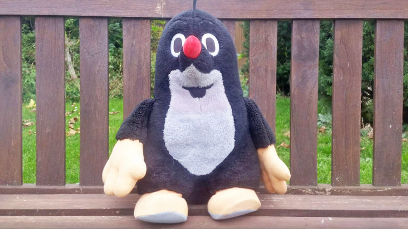 50cm tall mole cuddly toy sitting on a bench